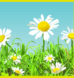 summer background cartoon green glade with vector image