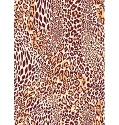 Seamless classic leopard texture pattern vector image