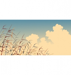reed sky vector image vector image
