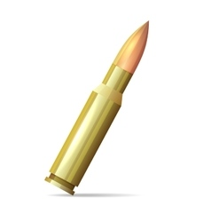 Bullet Realistic Style on White Background vector image