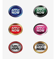 Apply now button icon vector