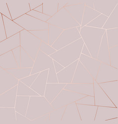 Decorative background with rose gold imitation vector
