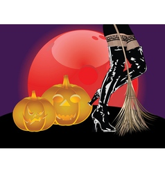 Legs in high boots and broom vector image vector image