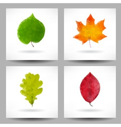 Set of backgrounds with triangular leaves vector image