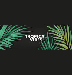 tropical palm realistic leaves in exotic vector image