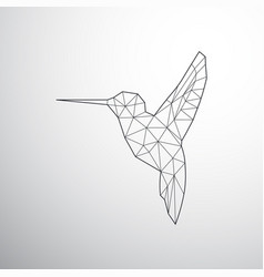 geometrical colibri vector image