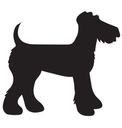 Airedale Terrier Silhouette vector image