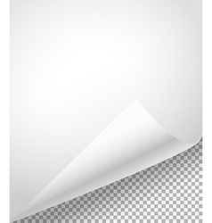 Blank paper sheets with bending corner on vector