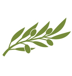 green olive branch symbol vector image