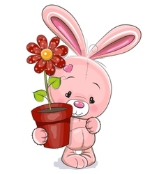 Rabbit with flower vector