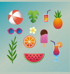 set summer vacation and tropical activities vector image