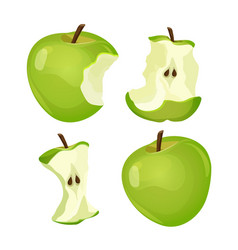 stages of whole and bitten apple isolated on white vector image vector image