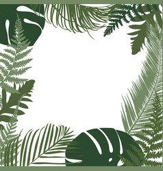 tropical leaves frame template vector image