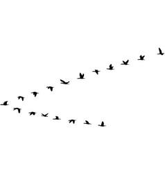 V formation vector