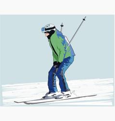 winter skier vector image