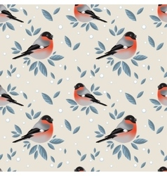 Bullfinches with foliage and snow pattern vector image