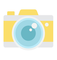 Camera flat icon travel and tourism vector