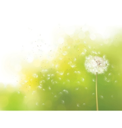 Spring flower vector