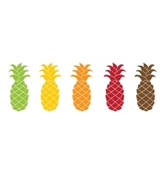 Flat pineapple icon set colorful vector image vector image