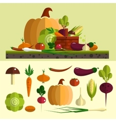 Vegetables icons set in flat style vector image