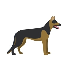 German shepherd dog breed vector image vector image