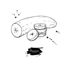 banana sliced and peeled piece drawing vector image