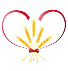 spikelets bow heart a bountiful harvest vector image