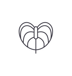anthurium flower line icon concept anthurium vector image