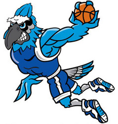 Blue jay basketball sports logo mascot vector