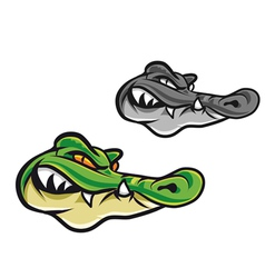 Cartoon crocodile head vector image