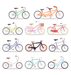 Collection of realistic bicycles vintage vector