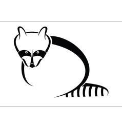 Raccoon symbol vector image