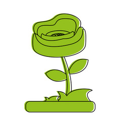 rose flower icon image vector image