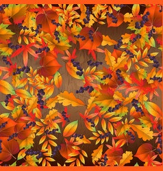 seamless pattern with colorful autumn leaves on vector image