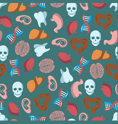 internal human organs seamless pattern vector image