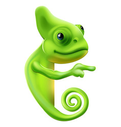 Cartoon chameleon pointing vector