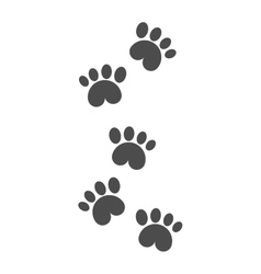Dog foot tracks isolated steps vector image