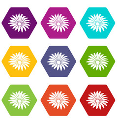gerber flower icons set 9 vector image