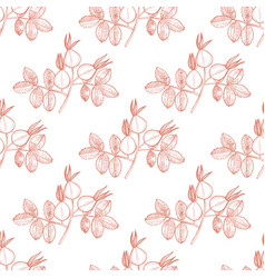 Rose hip pattern in hand drawn style vector