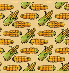 Seamless pattern with corn background in vector