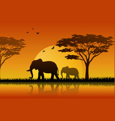 silhouette elephant at lake of savanah vector image