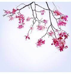 Spring Blooming Sakura branch of blots background vector image