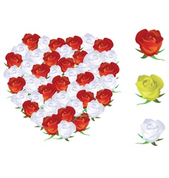 heart shape roses vector image vector image