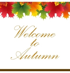 Autumn banner from maple leaves with text vector image