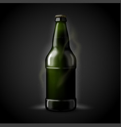 3d realistic beer bottle isolated on black vector