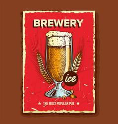 foamy beer glass brewery advertising banner vector image