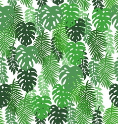 On a white background tropical leaves pattern vector