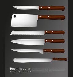 realistic knives collection vector image