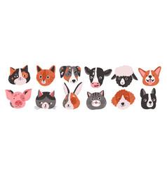set happy funny domestic animals or farm pet vector image