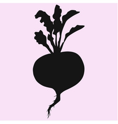 turnip with leaves vector image
